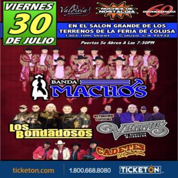 BANDA MACHOS, GRUPO VENNUS & LOS BONDADOSOS!: Main Image