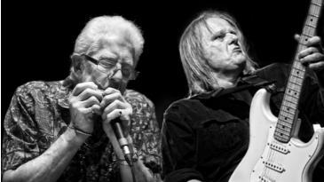 Survivor Blues: John Mayall & Walter Trout: