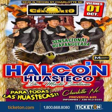 HALCON HUSTECO:
