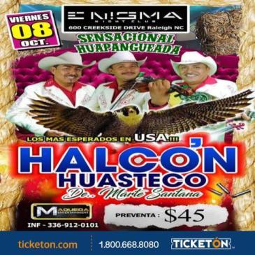 HALCON HUSTECO