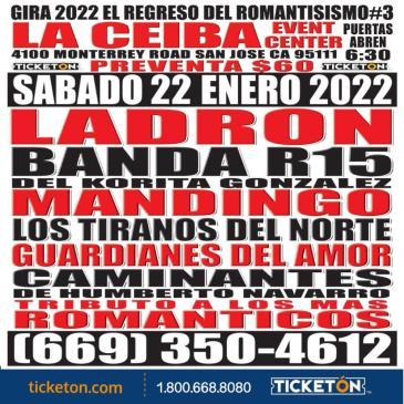 LADRON, BANDA R15 Y MANDINGO.