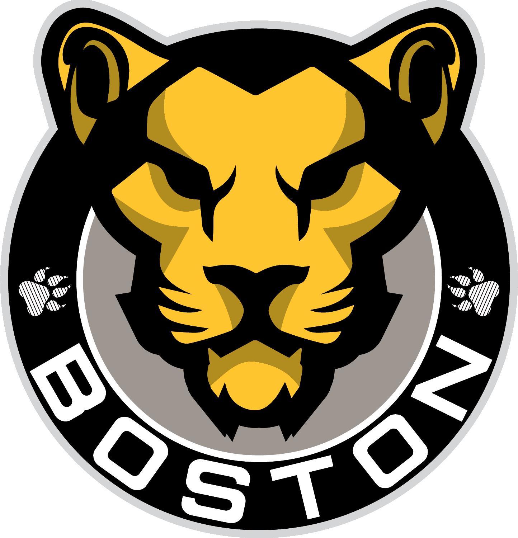 NWHL - Boston Pride: Main Image