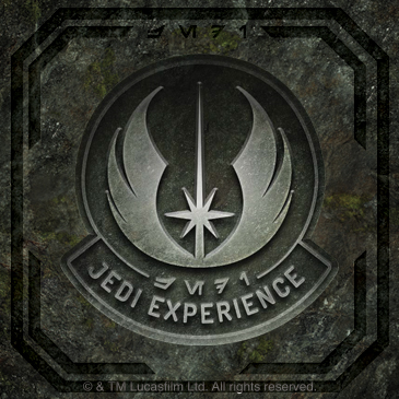 The Jedi Experience: Main Image